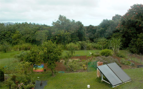 Our veggie garden in October 2006